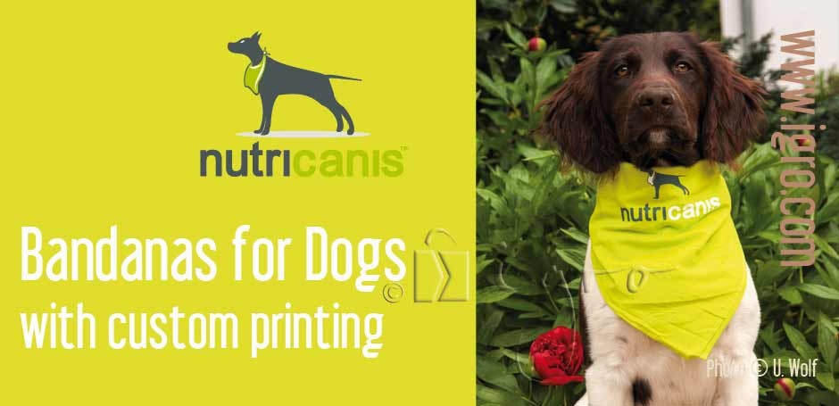 Custom printed dog scarf bandana