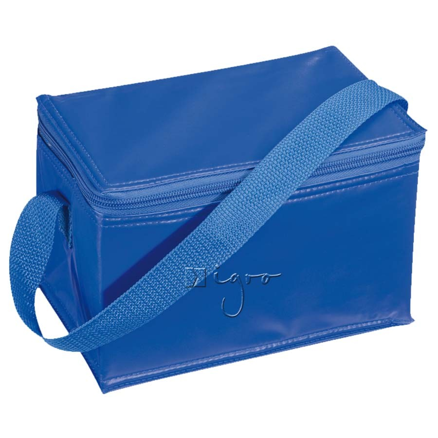 Small cooler bag with shoulder strap
